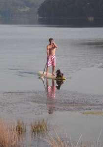 Burrill lake stand up paddleboard, Mark & Coco on Burrill Lake