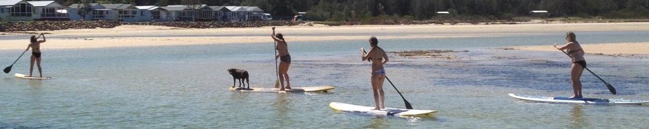 Paddle boarding on Burrill Lakes, NSW